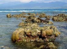 lombok gili islands