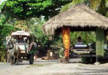 Sukarara desa-lombok